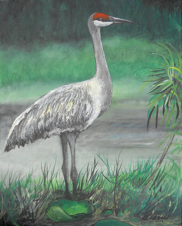 Pelican Art Print featuring the painting Sandhill Crane by Edward Walsh