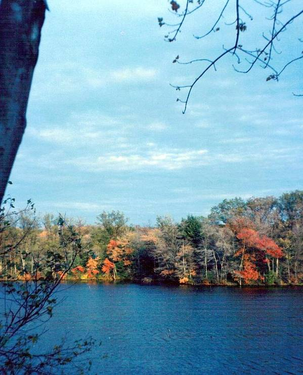 Photograph Art Print featuring the photograph Silver Lake Fall Blue by Debbie Wassmann