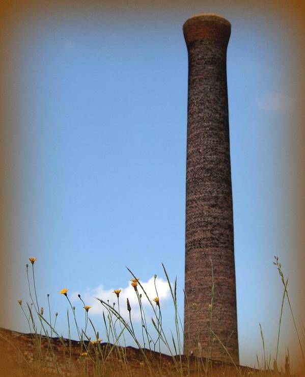 Stack Art Print featuring the photograph Yellow Flowers by Tammy Cantrell
