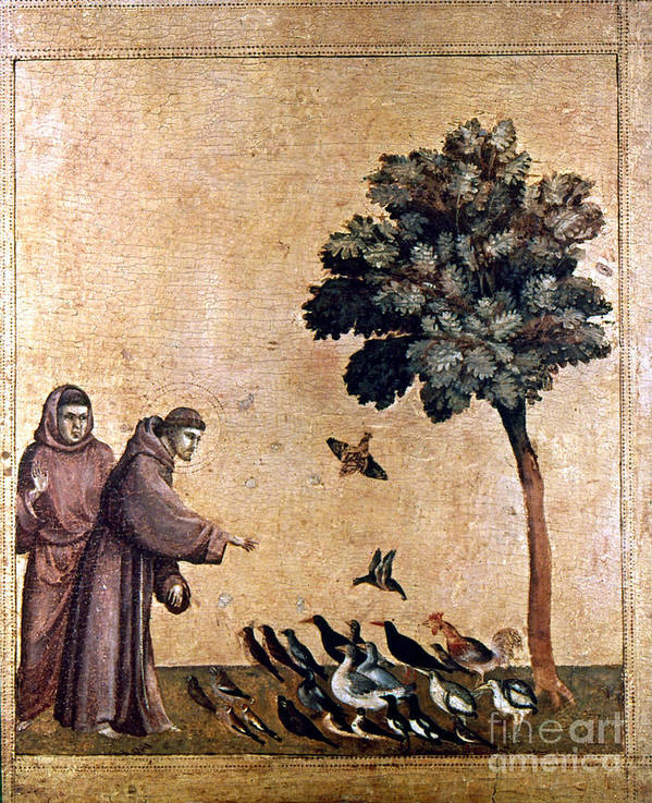 Aod Art Print featuring the painting St. Francis Of Assisi by Granger