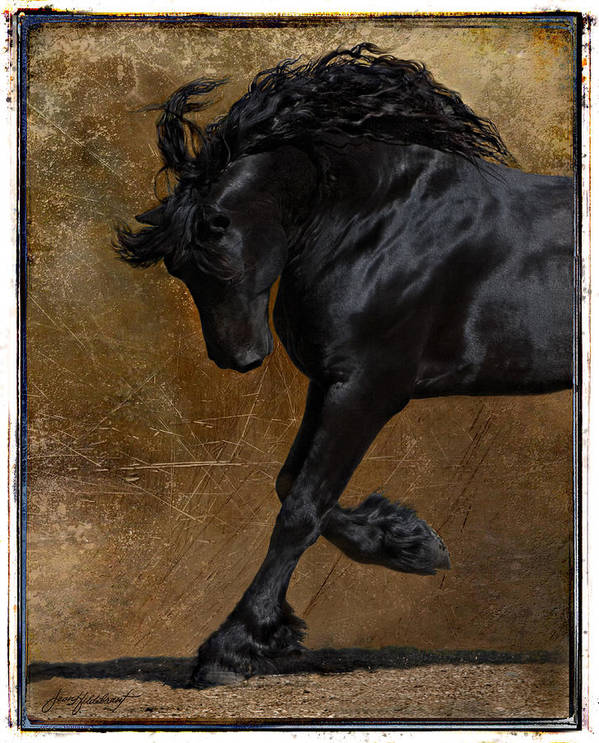Horse Art Print featuring the photograph A Regal Bow by Jean Hildebrant