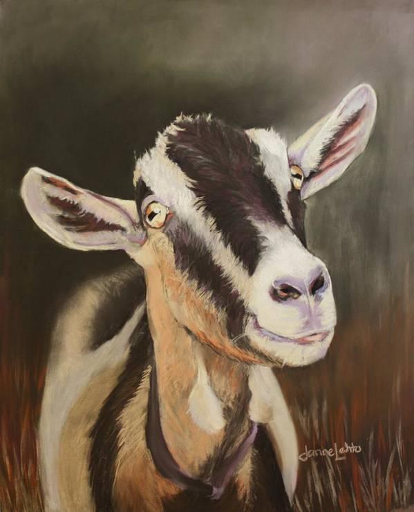 Goat Art Print featuring the painting Alpine Goat by Janae Lehto