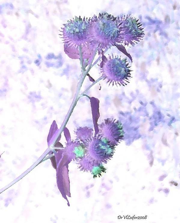 Plant Art Print featuring the digital art Bush Of Burdock by Dr Loifer Vladimir