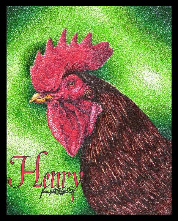 Rooster Art Print featuring the drawing Henry by Scarlett Royal