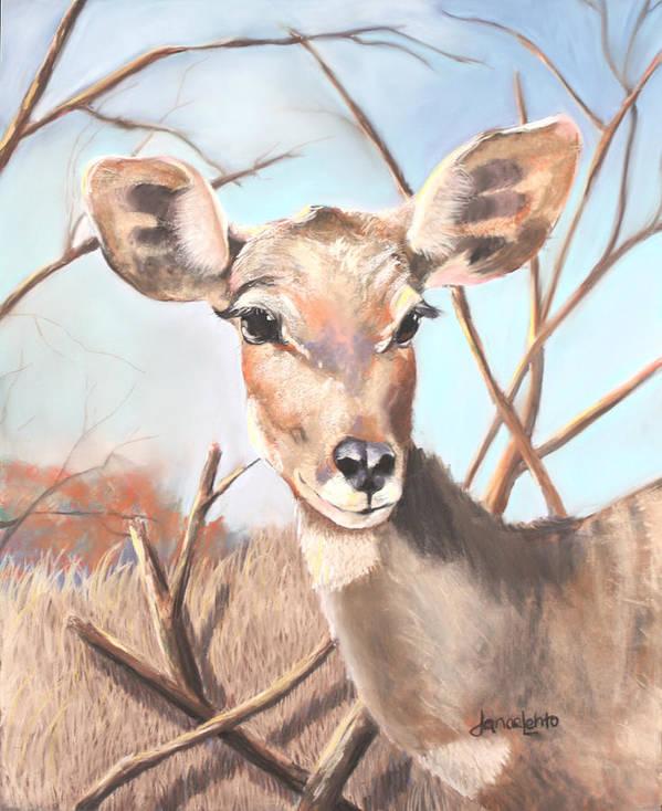 Kudu Art Print featuring the painting Lesser Kudu by Janae Lehto