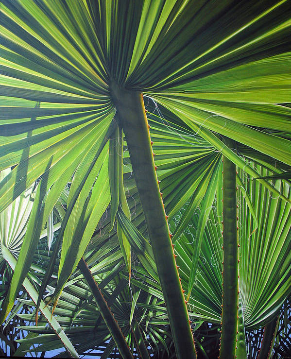 Palmtrees Art Print featuring the painting Lights And Shadows by Laine Garrido