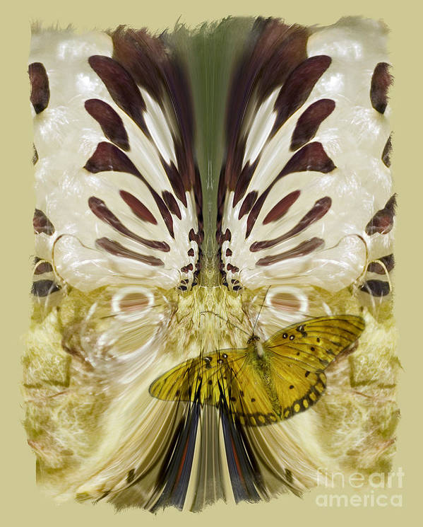 Butterfly Art Print featuring the digital art Metamorphosis by Chuck Brittenham
