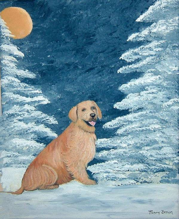 Golden Retriever Art Print featuring the painting Midnight Snow by Tammy Brown