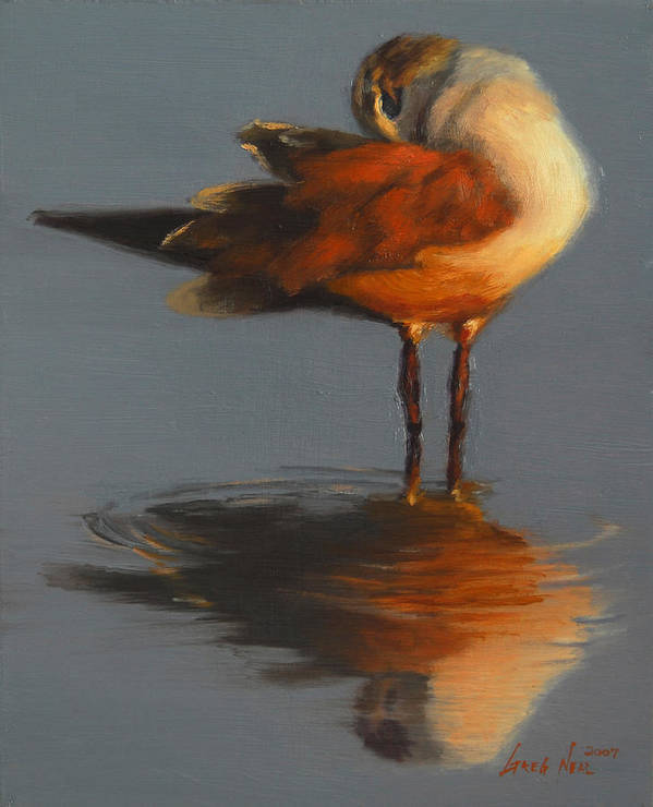 Bird Art Print featuring the painting Morning Reflection by Greg Neal