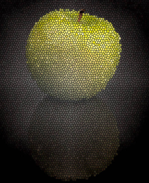 Andrew Kubica Art Print featuring the photograph Mosaic Apple by Andrew Kubica