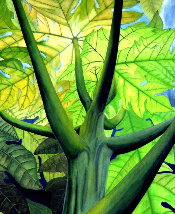 Papaya Tree Art Print featuring the painting Papaya Tree by Kevin Smith