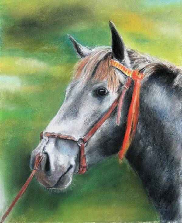 Horse Art Print featuring the painting Pure Spanish by Ceci Watson