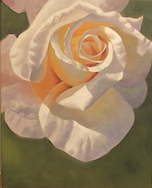 White Art Print featuring the painting Purity Rose by Marilyn Tower
