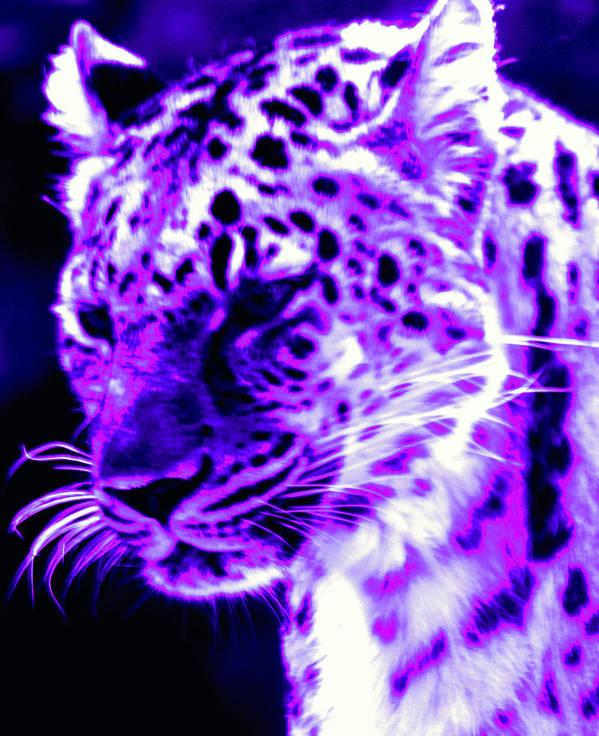 Jaguar Art Print featuring the photograph Purple Jaguar by Nick Gustafson