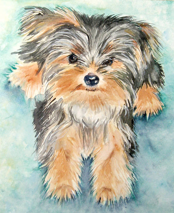 Canine Art Print featuring the painting Rascall by Gina Hall