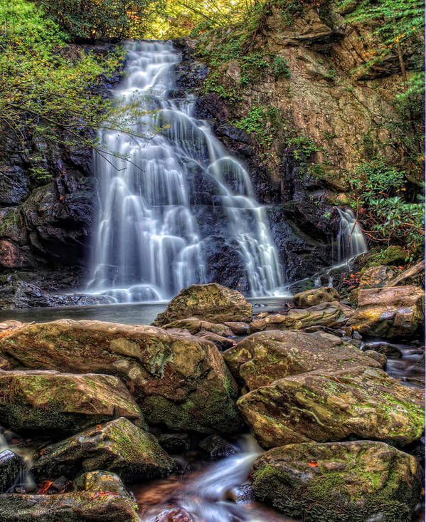Gsmnp Art Print featuring the photograph Spruce Flat Falls by Ron Plasencia