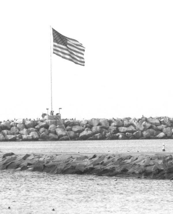 Flag Art Print featuring the photograph Stands Alone by Shari Chavira
