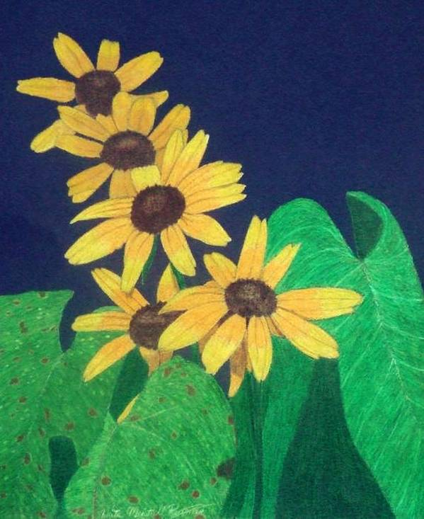 Black-eyed Susan Art Print featuring the drawing Summers End by Anita Putman