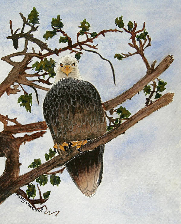 Eagle Art Print featuring the painting The Sentinel by Mary Gaines