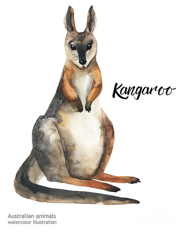 Forest Art Print featuring the digital art Australian Animals Watercolor by Kat branches