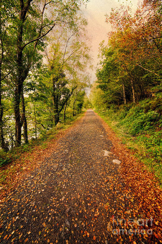 Hdr Art Print featuring the photograph Country Lane by Adrian Evans