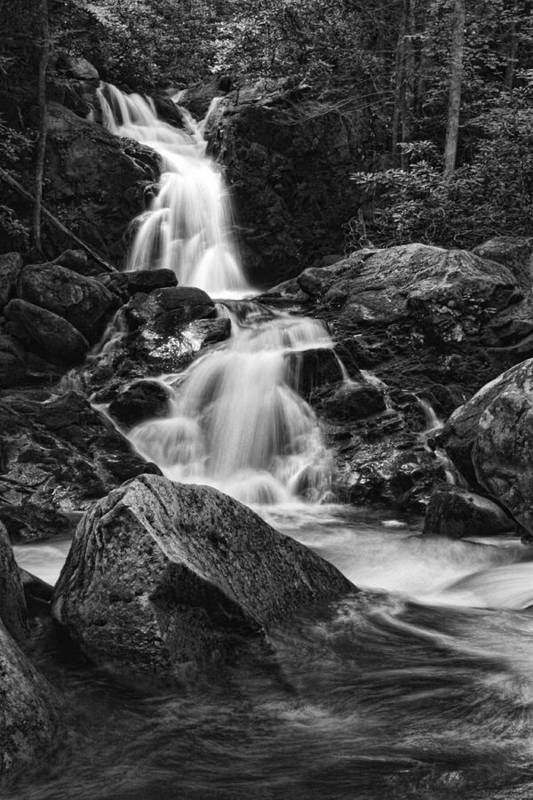 Waterfall Art Print featuring the photograph Mouse Creek Falls by Shari Jardina