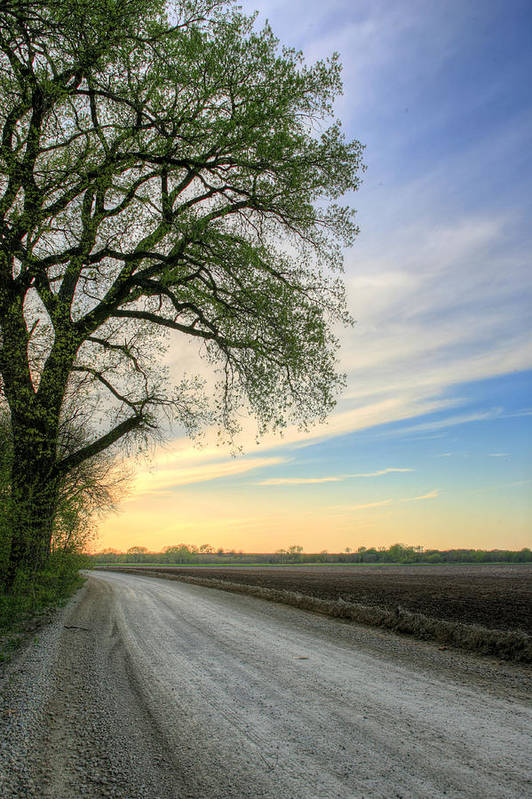 Wichita Art Print featuring the photograph The Dirt Road by JC Findley