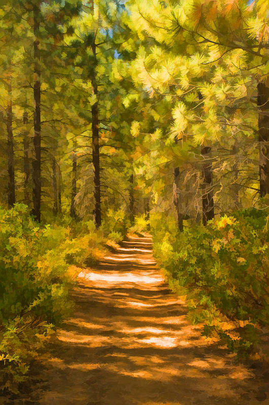 Trail Art Print featuring the digital art Trail Through The Woods by Mick Burkey