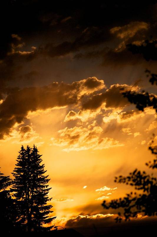 Sunset Art Print featuring the photograph Golden Sky by Kevin Bone