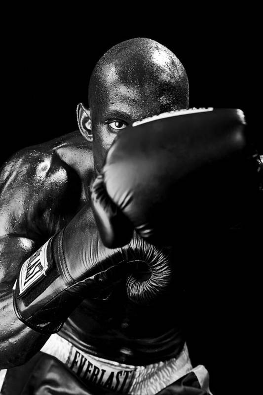 Boxer Art Print featuring the photograph Black Boxer In Black And White 04 by Val Black Russian Tourchin