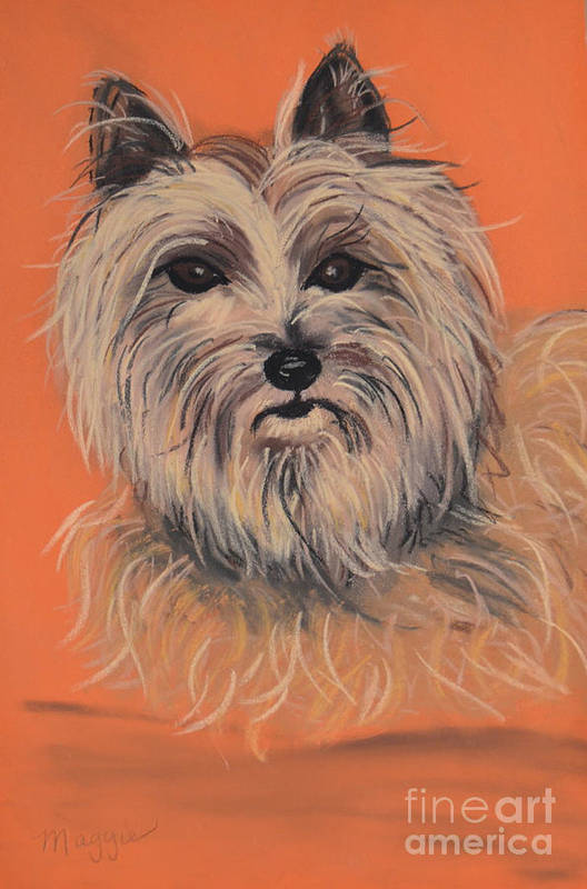 Cairn Terrier Art Print featuring the pastel Cairn Terrier by Christine Crosby