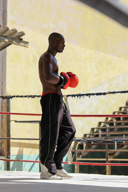 Athlete Art Print featuring the photograph El Boxeador by Dawn Currie