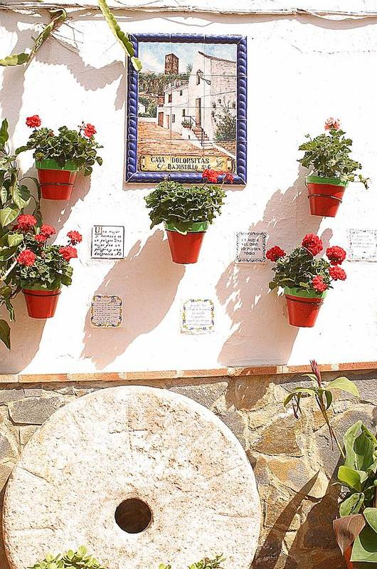 Jez C Self Art Print featuring the photograph Landing Geraniums by Jez C Self