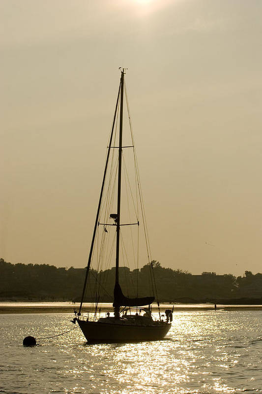 Swimming Art Print featuring the photograph Sailboat At Rest by Jack Foley