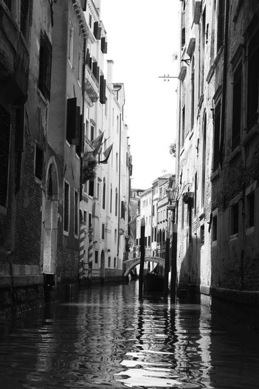 Venice Art Print featuring the photograph Venice Canals by Greg Sharpe