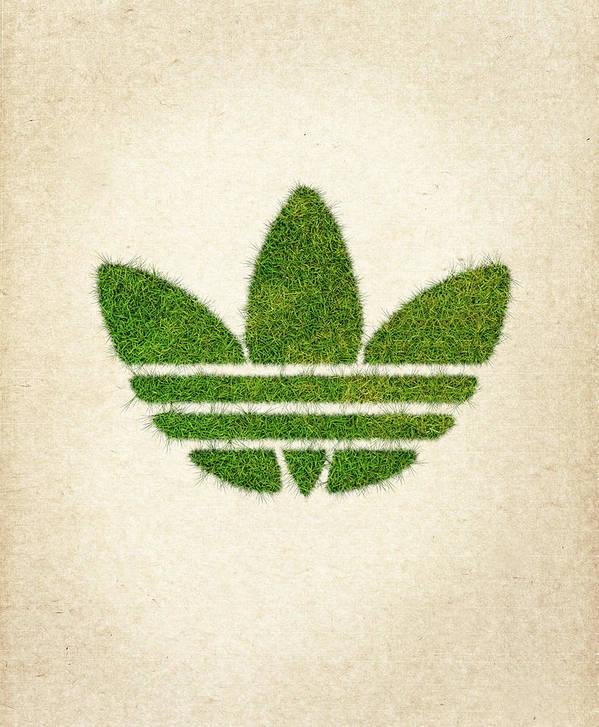 Adidas Grass Logo Art Print