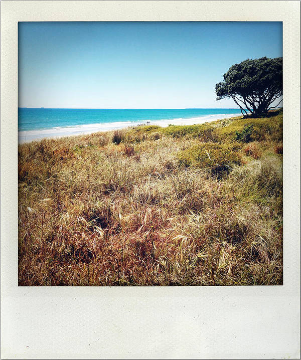 Sand Dune Art Print featuring the photograph Coastline by Les Cunliffe