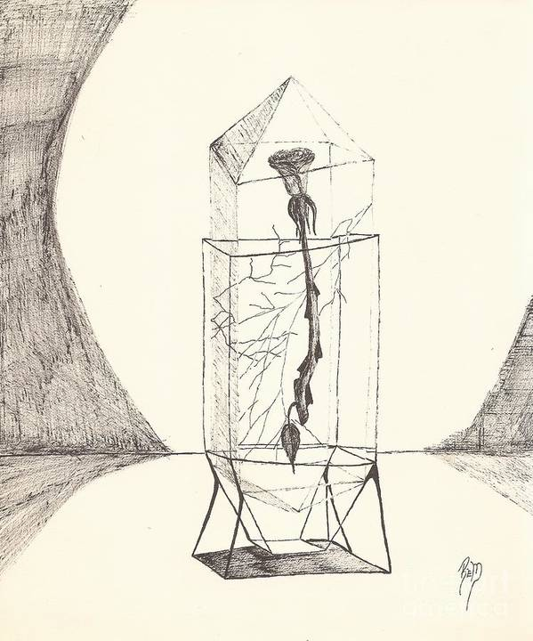 Pen And Ink Art Print featuring the drawing Cracked... Sketch by Robert Meszaros
