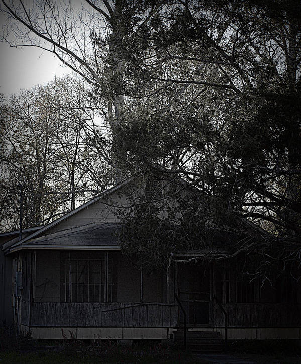 Old House Art Print featuring the photograph Shack by Paul Wilford