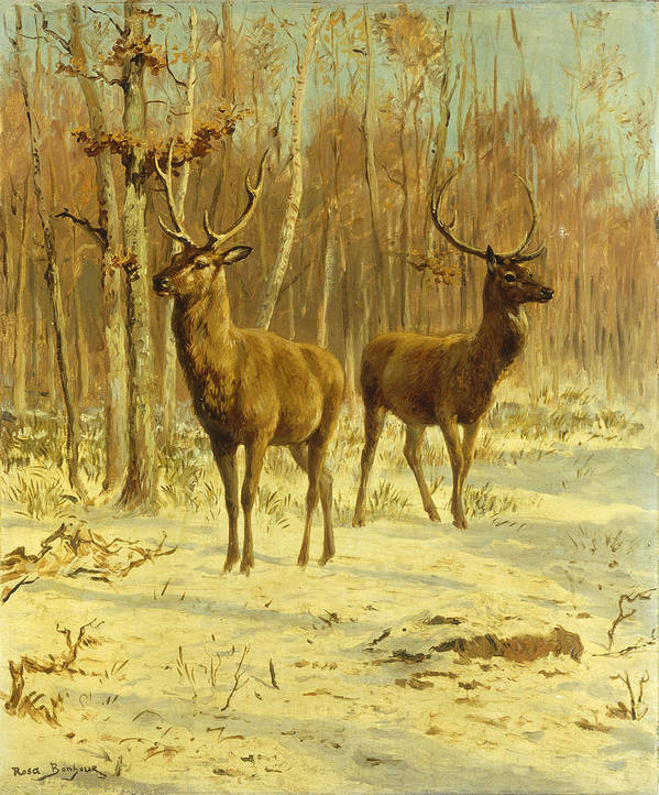 Two Stags Print featuring the painting Two Stags In A Clearing In Winter by Rosa Bonheur