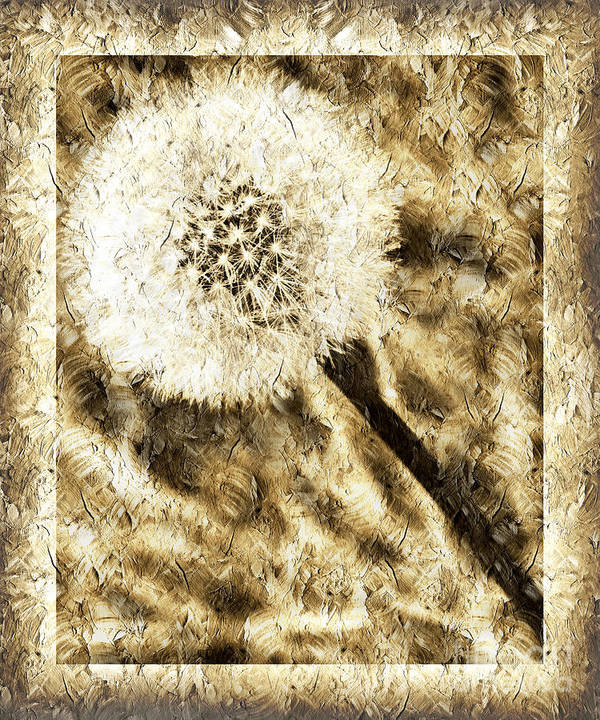 Dandelion Art Print featuring the photograph A Dandy Glow by Andee Design