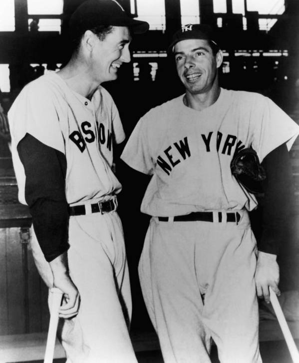 1950s Candids Art Print featuring the photograph Top Sluggers. Ted Williams by Everett