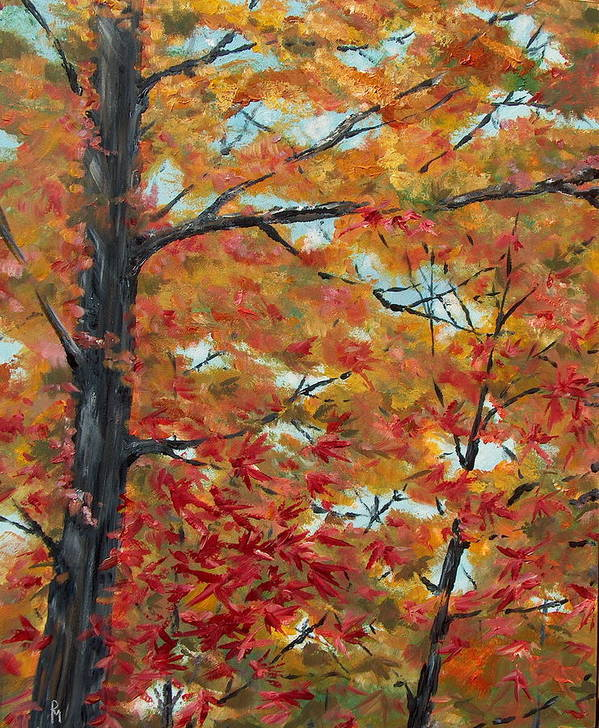 Fall Foliage Art Print featuring the painting Looking Up by Pete Maier