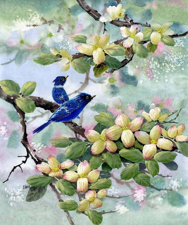 Blue Jays Art Print featuring the painting A Touch Of Pink On White by Eileen Fong