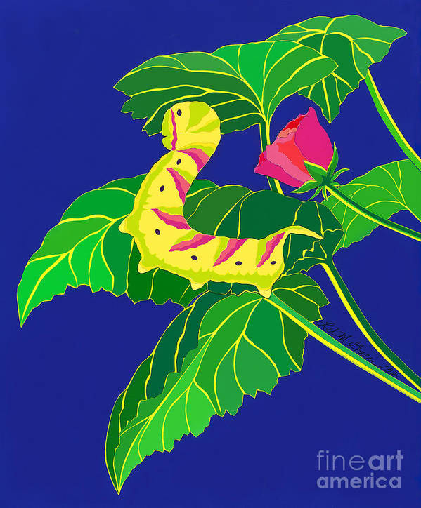 Nature Art Print featuring the drawing Caterpillar by Lucyna A M Green