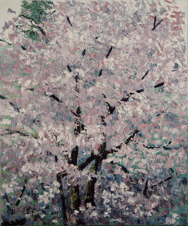 Trees Art Print featuring the painting Cherry Pink by Paul Illian