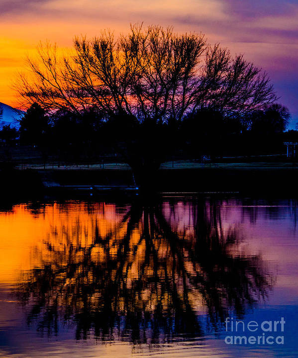 Sunset Art Print featuring the photograph Sunset Silhouette by Joy McAdams