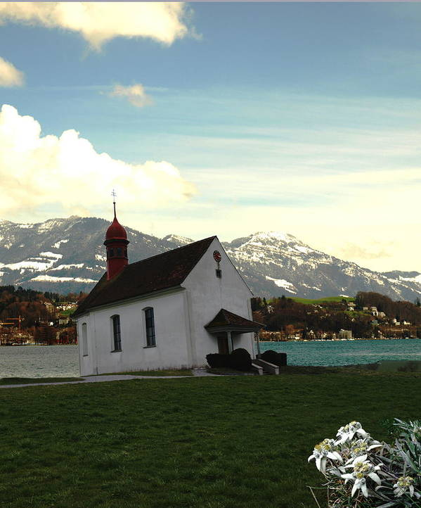 Spring Art Print featuring the photograph Swiss Hope by Chuck Shafer