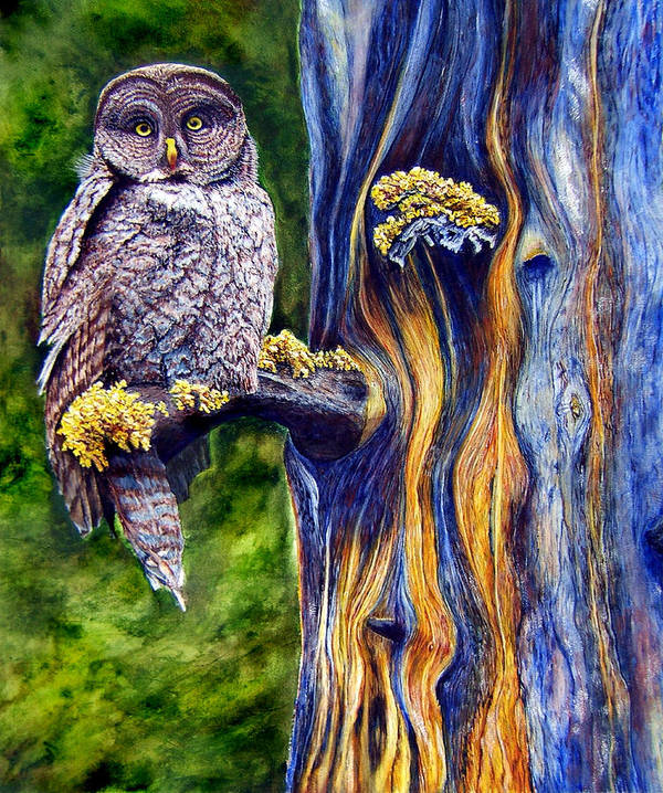 Great Hray Owl In Tree Art Print featuring the painting Hoo's Look'n by JoLyn Holladay