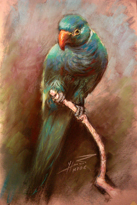 Green Parrot Art Print featuring the pastel Green Parrot by Ylli Haruni